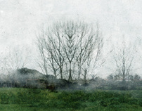 El bosque cuántico