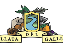 Logo design competition - Vallata del Gallico