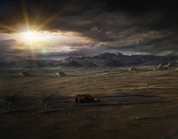 Zad Al Salhien Matte Painting Collection