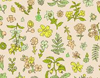 Fabric / Textile Design