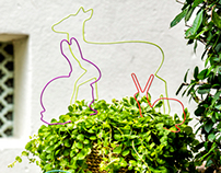 Garden Critters