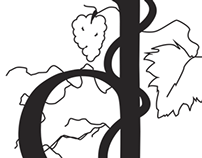 Debonne Vineyards Logo Design