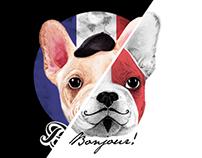 French Bulldog Says Bonjour