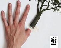 WWF Rainforest