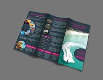 Sokha tri fold brochure