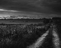 Landscape#set01