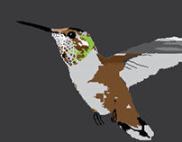 HummingPolygon
