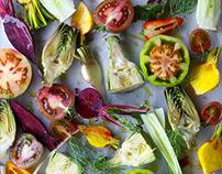 Salads cookbook 2013