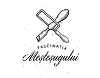 """""""Fascinaţia Meşteşugului"""" project"""