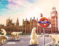 Polar bears in London