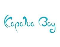 COASTAL HOUSING ESTATE- Kapalua Bay