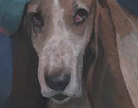 2013 Indiegogo Backer Rewards- Pet Portraits