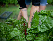 Homegrown City Farms:  Diggin In