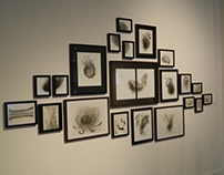 Hanging works on paper