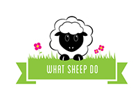 What Sheep Do