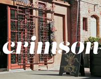 Crimson: Indiegogo campaign