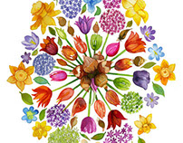 Royal Horticultural Society Autumn Poster Campaign