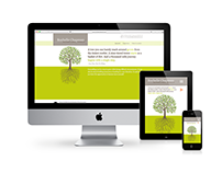web design responsive site for a professional