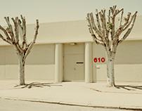 Landscape 610