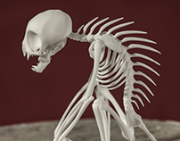 El Chupacabra Skeleton