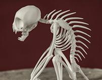 El Chupacabra Skeleton