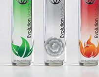 Evo Vodka Bottles
