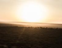Kenya Skylines