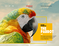 《The Parrot》
