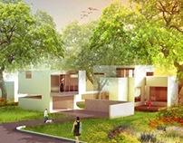 Tree House/ House Tree