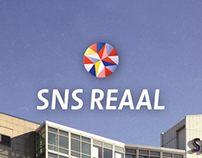 SNS REAAL Annual Report 2010