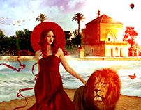 lion in  marrakech