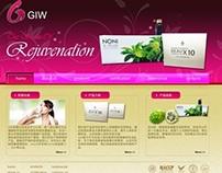 GIW Homepage Mock Up