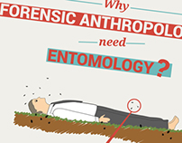 infographics / poster on Forensic Entomology