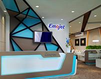 Emojet @ Dubai Air show 2013