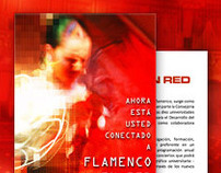 Flamenco en Red 2009-2010