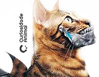 Curiosidade Animal • Manipulação