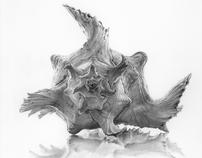 Shells series, 2009