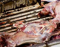Meat transport in Uganda