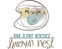 Blue Egg Brown Nest