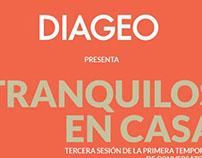 Flyer - Diageo