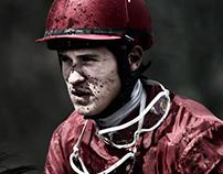 Horses on races