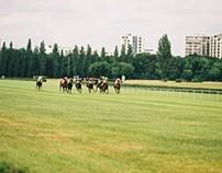 Horses races