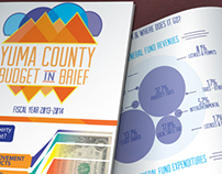 Local Government Budget Brochure
