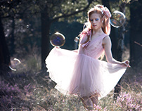Light Fairy, Dark Fairy
