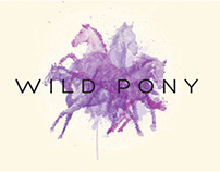 Wild Pony - Illustration