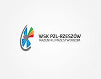 Diversity PZL WSK-Rzeszów