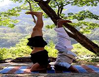 Yoga Benefits | Hari Om Yoga Vidya School