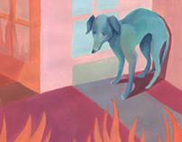 Hoe het hondje tot zijn einde kwam