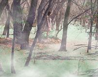 Mist Delta