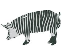 Olaf Neutrix: Zebra Promotional